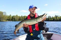 Pêcheur Holds une pêche attrapée par Muskie photographie stock