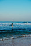Pêcheur local sur le bâton sur une plage de l'Océan Indien, Sri Lanka Photos libres de droits