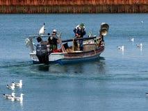 Pêcheur Off Ilha De Culatra Portugal image stock