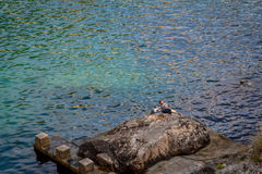 Pêcheur seul, Dubrovnik, Coratia Photographie stock
