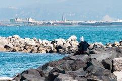 Pêcheur sur des roches Image stock