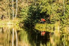 Pêcheur sur la berge Beau paysage d'automne image stock