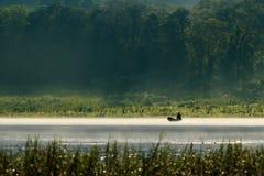 Pêcheur sur une silhouette de bateau avec la vue de forêt Photos stock