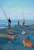 Pêcheurs égyptiens et chats locaux Photographie stock