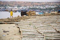 Pêcheurs conduisant la voiture sur la plage avec les bateaux de pêche colorés le 7 février 2012 en Mui Ne, Vietnam Photographie stock libre de droits
