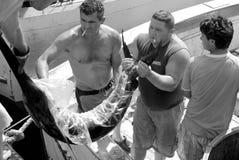 Pêcheurs déchargeant des espadons Photo stock
