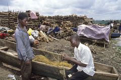 Pêcheurs et commerçants de bois de construction chez le lac Victoria Photographie stock