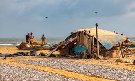 Pêcheurs et poissons de séchage sur la plage de Negombo Images libres de droits