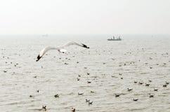 Pêcheurs non identifiés dans un bateau Image libre de droits