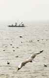 Pêcheurs non identifiés dans un bateau Image stock