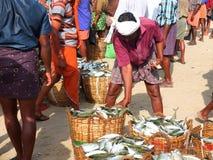 Pêcheurs, plage de Marari, Kerala Inde Image libre de droits