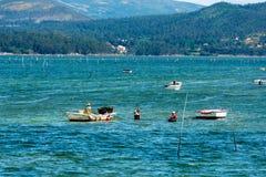 Pêcheurs recueillant des palourdes dans Carril Photographie stock libre de droits