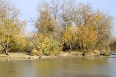 Pêcheurs sur la banque de la rivière en automne Pêche de l'amorce Images libres de droits