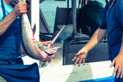 Pêcheurs tenant des espadons Photos stock