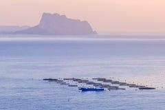 Pêchez l'élevage avec des réservoirs directement dans la mer, Espagne Image stock