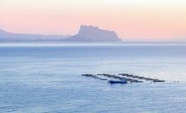 Pêchez l'élevage avec des réservoirs directement dans la mer, Espagne Photographie stock