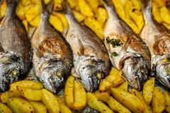 Pêchez l'aurata de Sparus pour faire avec cuire au four des pommes de terre et des verts photo stock