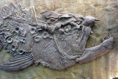 Pêchez le fossile images stock