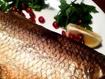 Pêchez le poisson qui flotte à vous photos libres de droits