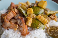 Pêchez les organes soupe et Fried Pork aigres avec du riz photos stock
