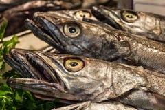 Pêchez sur le marché, gaine noire (espada) sur la poissonnerie Mercat De Photographie stock libre de droits