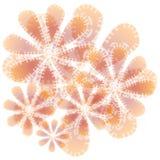 Pêssego abstrato da textura da flor ilustração stock