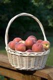 Pêssegos em uma cesta Imagem de Stock Royalty Free