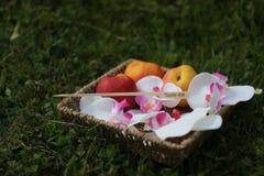 Pêssegos em uma cesta com as flores na grama imagem de stock