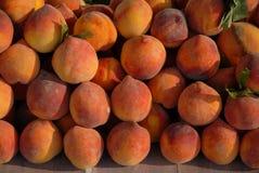 Pêssegos, fresco, maduro e suculento! imagens de stock royalty free
