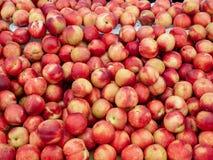 Pêssegos maduros brilhantes no suporte para a venda em um mercado exterior fotografia de stock royalty free