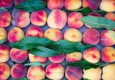 Pêssegos maduros dentro no mercado Fotografia de Stock Royalty Free