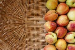 Pêssegos maduros na cesta Foto de Stock Royalty Free
