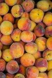 Pêssegos orgânicos frescos de Peaches Heap Of Fresh Ripe fotografia de stock