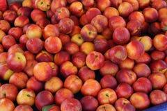 Pêssegos orgânicos frescos de Peaches Heap Of Fresh Ripe imagem de stock