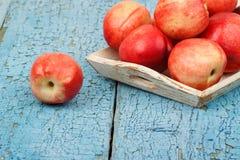 Pêssegos vermelhos maduros na bandeja na tabela de madeira azul Fotografia de Stock Royalty Free