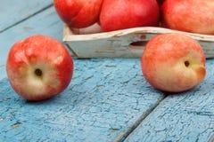 Pêssegos vermelhos maduros na bandeja na tabela de madeira azul Fotografia de Stock