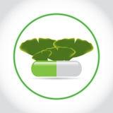 Píldora verde con las hojas del biloba del ginkgo Foto de archivo