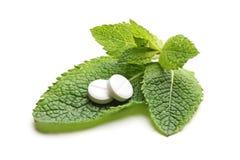 Píldoras blancas en hojas verdes de la menta Imagenes de archivo