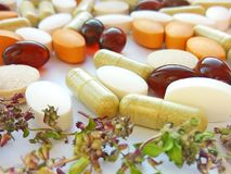 Píldoras de la medicina herbaria con las hierbas naturales secas en el fondo blanco Concepto de medicina herbaria y de suplemento imágenes de archivo libres de regalías