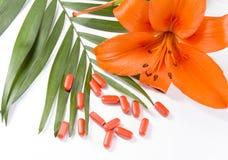 Píldoras, flor y el le verde Imágenes de archivo libres de regalías