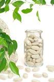 Píldoras herbarias del suplemento y hojas frescas Imágenes de archivo libres de regalías