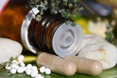 Píldoras homeopáticas sobre una hoja verde Imágenes de archivo libres de regalías