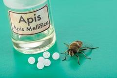 Píldoras, veneno y abeja homeopáticos de Mellifica de los Apis Fotografía de archivo libre de regalías