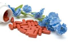 Píldoras y flor Foto de archivo libre de regalías
