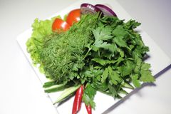 Półmisek świezi warzywa Obrazy Stock