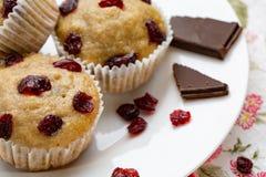 Półmisek domowej roboty weganinu dyniowi muffins z czekoladą i wysuszonymi wiśniami zdjęcie stock
