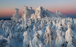 Półmrok w górach, zima Kolchimsky kamień, Perm Kray, Rosja obraz royalty free
