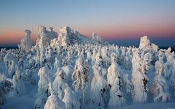 Półmrok w górach, zima Kolchimsky kamień, Perm Kray, Rosja zdjęcia stock