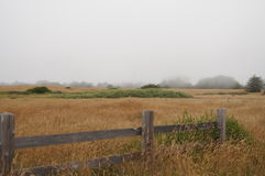 północna California łąka Zdjęcia Royalty Free