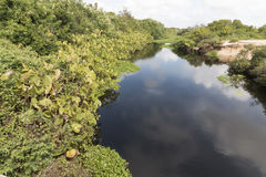 Północna linia brzegowa, rio grande robi Norte, Brazylia obrazy stock